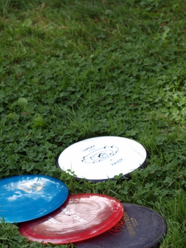 Discs in the grass
