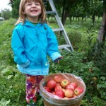 Apple Orchards and Cider Mills: A Michigan Family Tradition